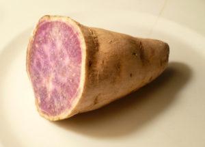 purpleyamphoto